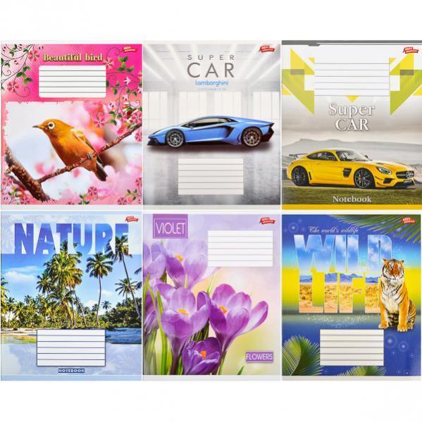 Тетрадь цветная 12 листов, клетка «Мрії» «mix» C12К