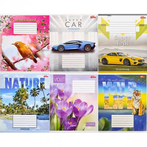 Тетрадь цветная 12 листов, клетка «Мрії» «mix» C12К, фото 2