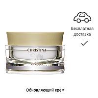 Обновляющий крем, Silk Upgrade Cream, 50 мл.