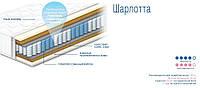 ШАРЛОТТА - ортопедический матрас ТМ СОНЛАЙН (Украина)