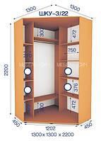 Шкаф купе угловой (2200/1300/1300),2 двери