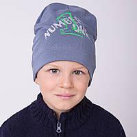 Осенняя шапка на мальчика 2017 - Number One - Артикул 2109