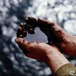 Закупаем обводненное отработанное масло
