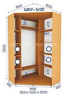 Шкаф купе угловой (2200/1500/1500), 2 двери, фото 1