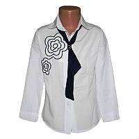 Блузка школьная х/б  7-10лет (122-140) арт.3185.1+галстук