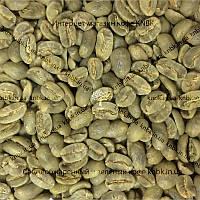 Арабика Колумбия Марагоджип (Arabica Colombia Maragogype) 200г. ЗЕЛЕНЫЙ кофе