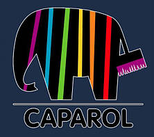 """Краска """"Caparol"""" premium"""