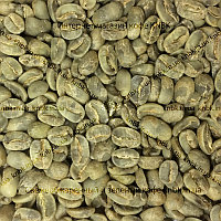 Арабіка Нікарагуа Марагоджип (Arabica Nicaragua Maragogype) 200г. ЗЕЛЕНИЙ кава