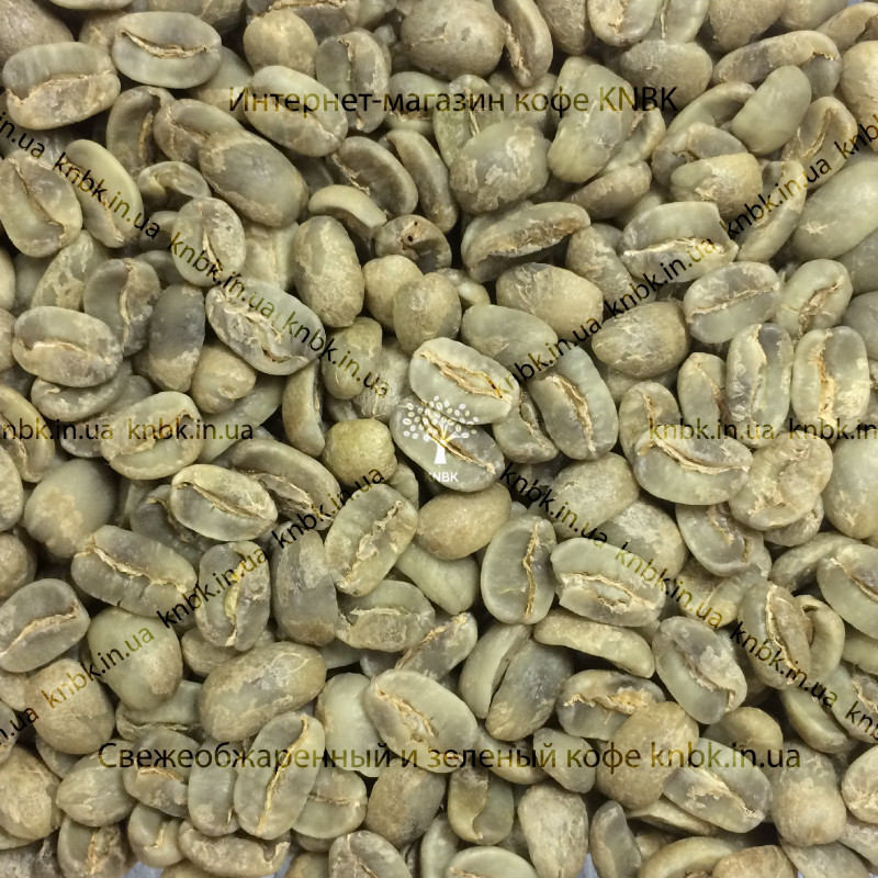 Арабика Гватемала Марагоджип (Arabica Guatemala Maragogype) 500г. ЗЕЛЕНЫЙ кофе