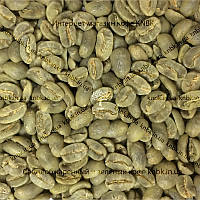 Арабика Колумбия Марагоджип (Arabica Colombia Maragogype) 500г. ЗЕЛЕНЫЙ кофе