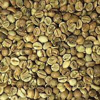 Робуста Танзания (Robusta Superior) 500г. ЗЕЛЕНЫЙ кофе