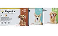 Сімпаріка жувальна таблетка для захисту собак від кліщів та бліх
