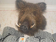 Чучело головы дикого кабана, секач 1, цвет серый