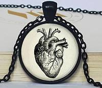 Кулон оригинальный круглый Сердце анатомическое