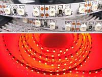 Светодиодная гибкая лента на самоклеющейся основе. LED strip 3528-120R-8MM-12V-9.6W 5m