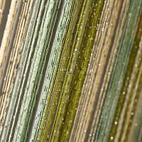 Нитяные шторы с люрексом бежево-салатово-оливковые