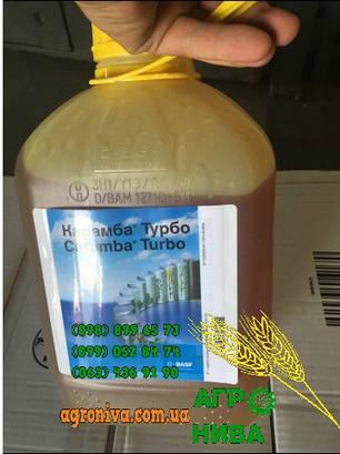 Фунгицид Карамба Турбо BASF, фото 2