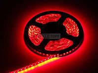 Biom Светодиодная лента B-LED 2835-120 R IP65 красный, герметичная, 1м, м