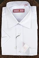 Рубашка белая для мальчика с коротким рукавом.