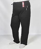 Штаны спортивные женские в больших размерах, фото 3