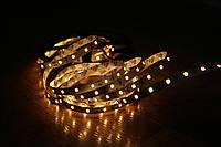 Светодиодная лента B-LED 2835-60 IP20 теплый белый, негерметичная, фото 1