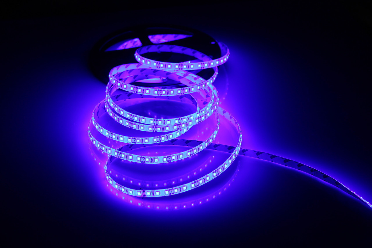 Светодиодная лента 3528-120 IP65 синий