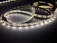 Светодиодная лента B-LED 3528-60 IP65 теплый белый, герметичная, фото 1