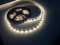 Светодиодная лента B-LED 3528-60 IP20 теплый белый, негерметичная, фото 1