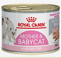Royal Canin MOTHER & BABYCAT mousse 195 г - консервы (мусс) для котят и кормящих кошек