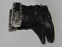 Kangaroos _Вьетнам _теплые современные ботиночки _ 37р_ст.24см Н49