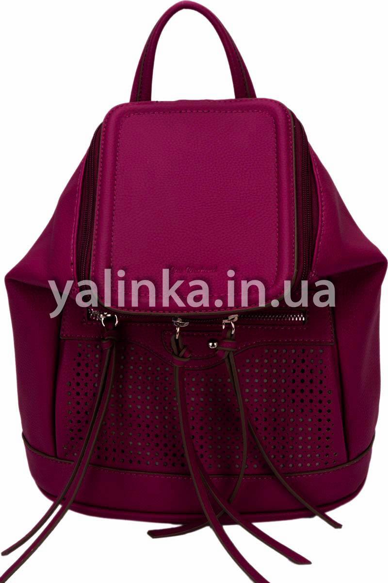 Сумка-рюкзак Сливовая 1 Вересня 26х14х27 (553066)