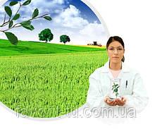 Фунгицид Аккорд м.с. ( гидроксид меди 150 г/л+300 г/л сера )