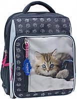 Рюкзак школьный Bagland Школьник 8 л. Серый (котенок светлый) (00112702)
