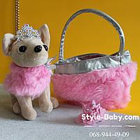Собачка в сумочке Кикки размер коробки 29*31*17 см