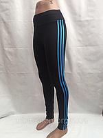 Лосины женские, эластик, голубые полоски,  размеры S M L XL, №5253, фото 1