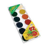 Краски Гамма акварельные Пчелка 12 цветов пластиковая упаковка без кисти (212040)