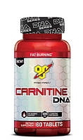 Carnitine DNA 60tabs (BSN USA)