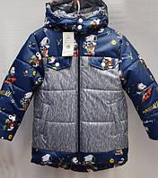 Зимняя куртка для мальчика с принтом 1108/5