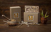 Проросшие зерна в коробке