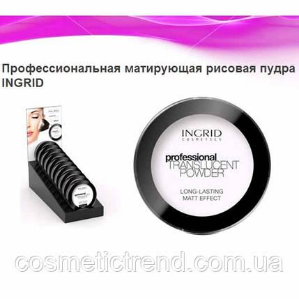 Пудра компактная рисовая матирующая Professional Translucent Powder INGRID COSMETICS, фото 2