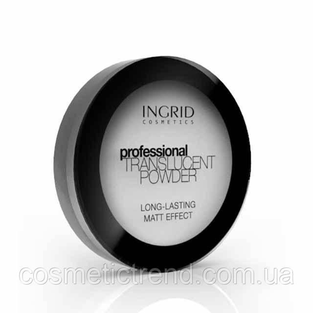 Пудра компактная рисовая матирующая Professional Translucent Powder INGRID COSMETICS