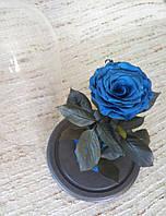 Синяя Роза в Колбе синий сапфир - Belle Rose