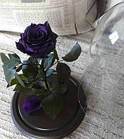 Фиолетовая Роза в Колбе фиолетовый аметист - Belle Rose