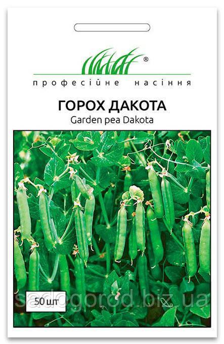 Семена Гороха, Дакота, 50 семян Syngenta (Голландия)