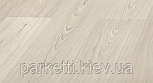 Kronopol D3461 Delta Пиния Триполис ламинат, 8мм, 31 класс