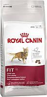 Royal Canin (Роял Канин) FIT 32 корм для физически активных кошек старше 1 года (4 кг)