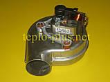 Вентилятор 8718642922 Bosch Gaz 6000 W WBN6000-24H RN, WBN6000-24C RN, фото 5