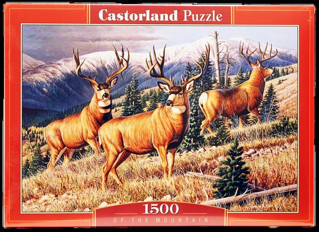 Пазлы Castorland 1500 элементов
