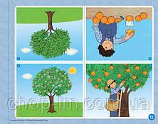 Playtime Starter Class Book / Учебник, фото 3