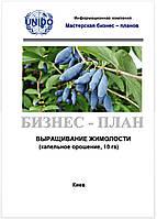 Бизнес–план (ТЭО). Выращивание жимолости (камчатской ягоды). Сбор. Реализация